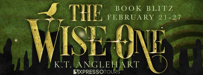 The Wise One [Book Blitz with Excerpt]