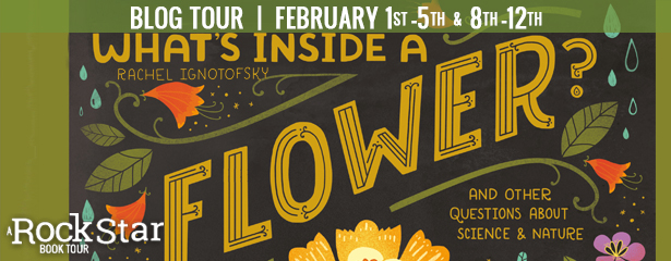 What's Inside a Flower – 5 Star Book Review