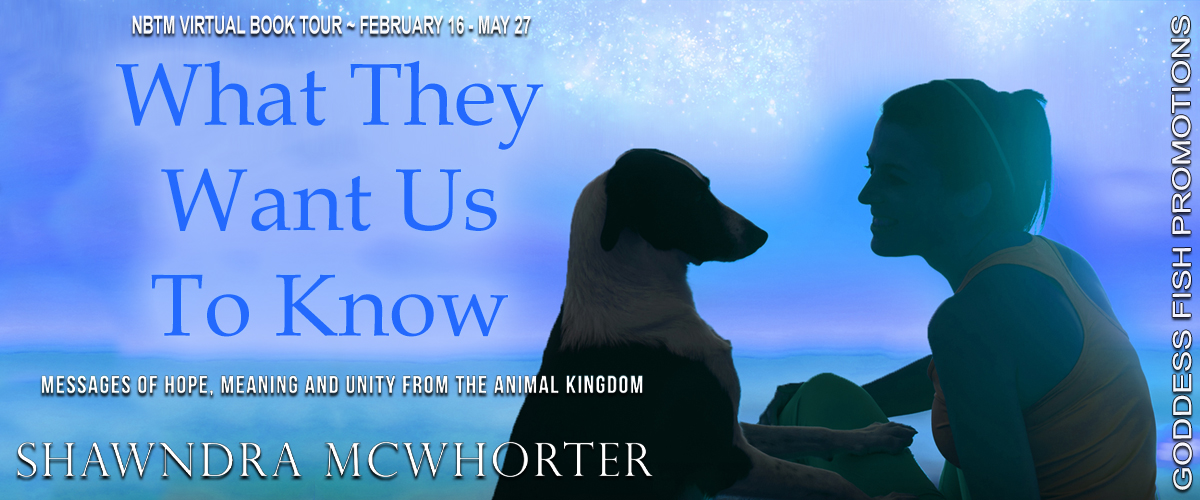 Author Interview with Shawndra McWhorter