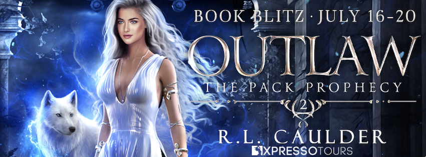 Outlaw [Book Blitz]