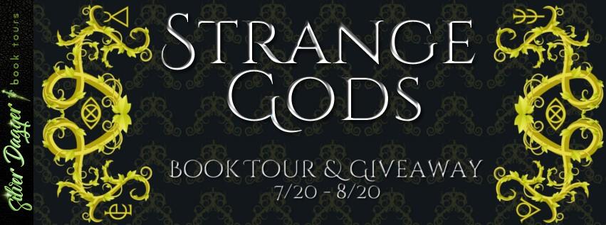 Strange Gods by Allison Kimble [Book Tour Spotlight]