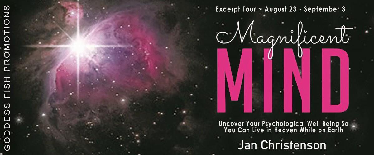 Magnificent Mind by Jan Christenson [Excerpt Tour]