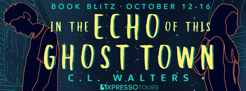In the Echo of this Ghost Town by C.L. Walters